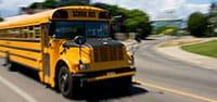 Charter a school bus