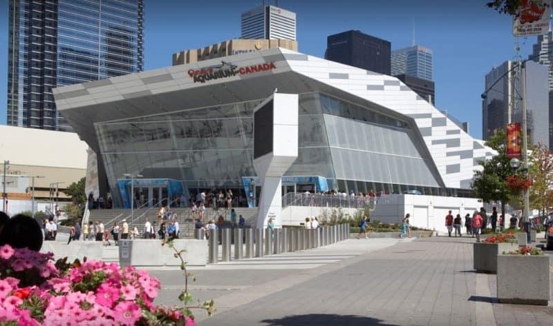 Top School Field Trips Ontario Ripley's Aquarium
